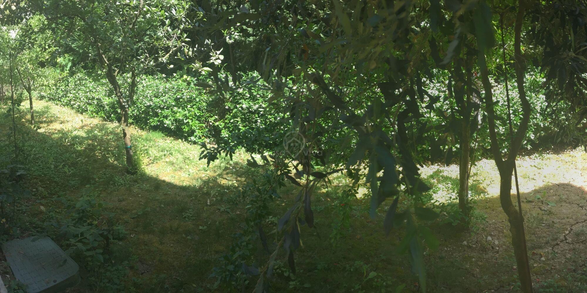 Murata: appartamento con giardino in palazzina di sole 8 unità immobiliari